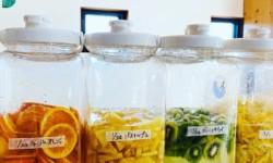【敦賀 腸活教室】夏休みミネラル醗酵ドリンク教室&ランチ付ミネラル醗酵キムチ教室のご案内